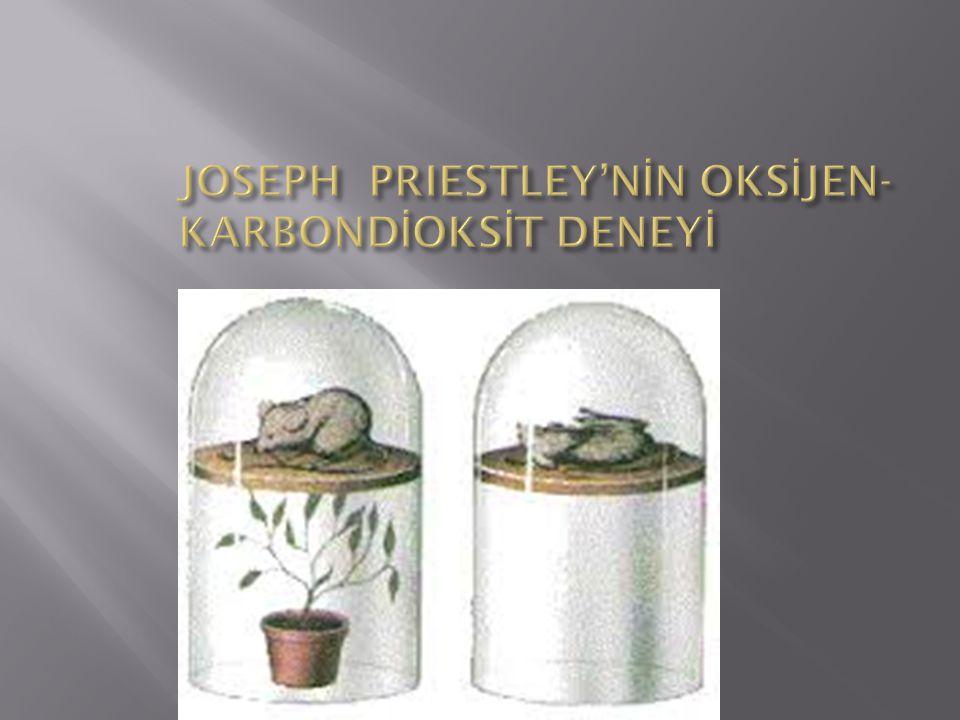 JOSEPH PRIESTLEY'NİN OKSİJEN-KARBONDİOKSİT DENEYİ