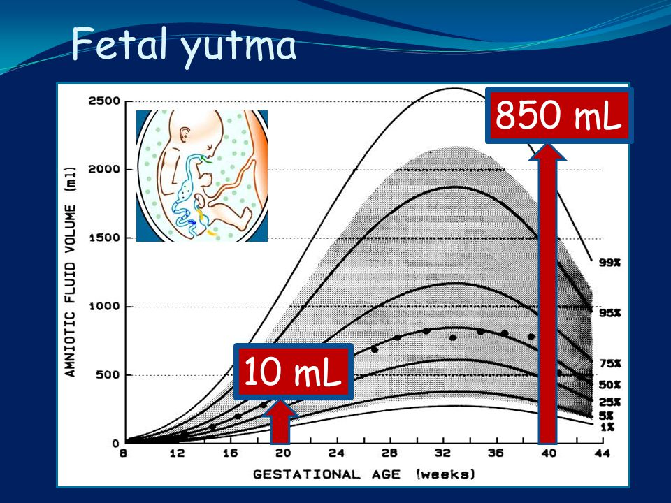 Fetal yutma 850 mL 10 mL