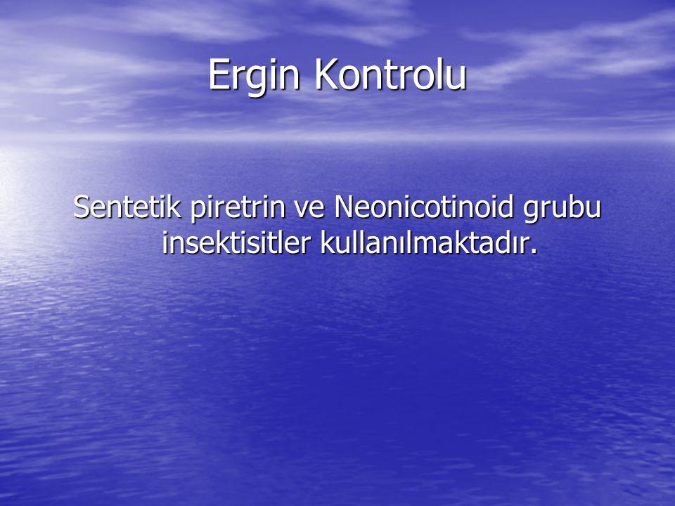 Ergin Kontrolu Sentetik piretrin ve Neonicotinoid grubu insektisitler kullanılmaktadır.
