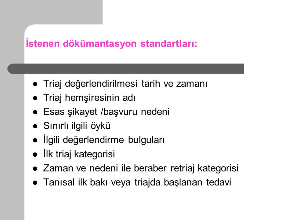 İstenen dökümantasyon standartları:
