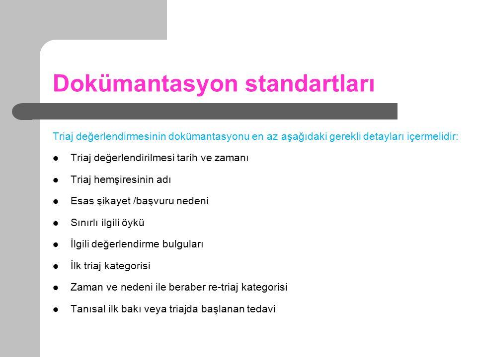 Dokümantasyon standartları