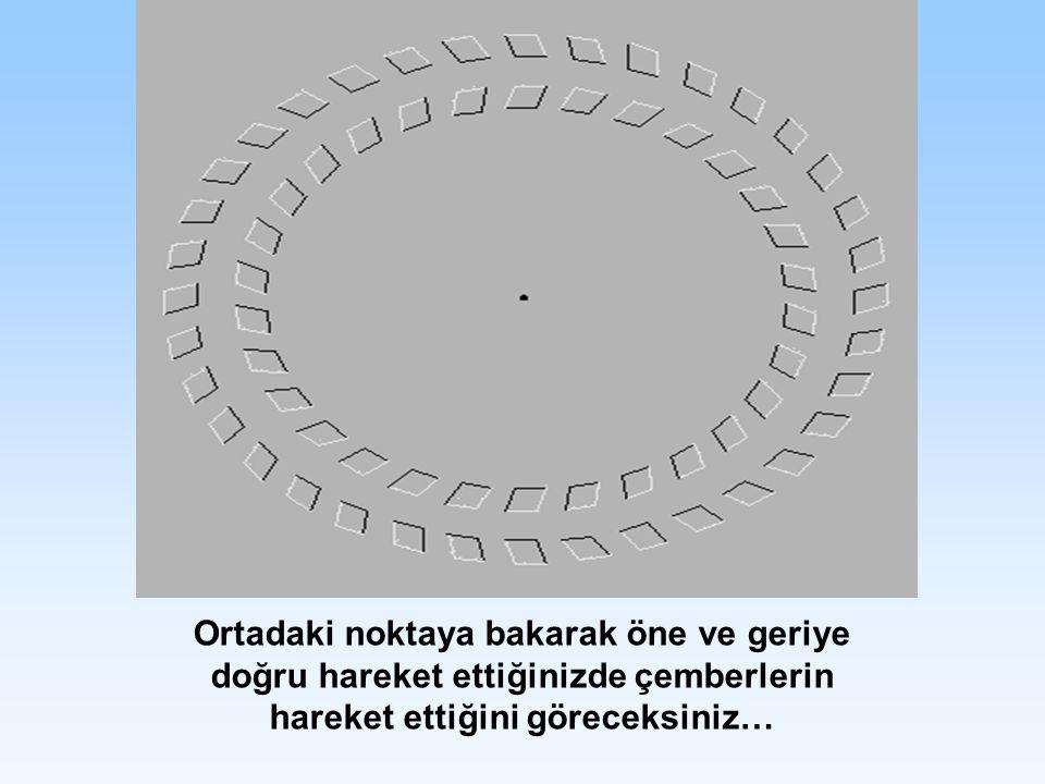 Ortadaki noktaya bakarak öne ve geriye doğru hareket ettiğinizde çemberlerin hareket ettiğini göreceksiniz…