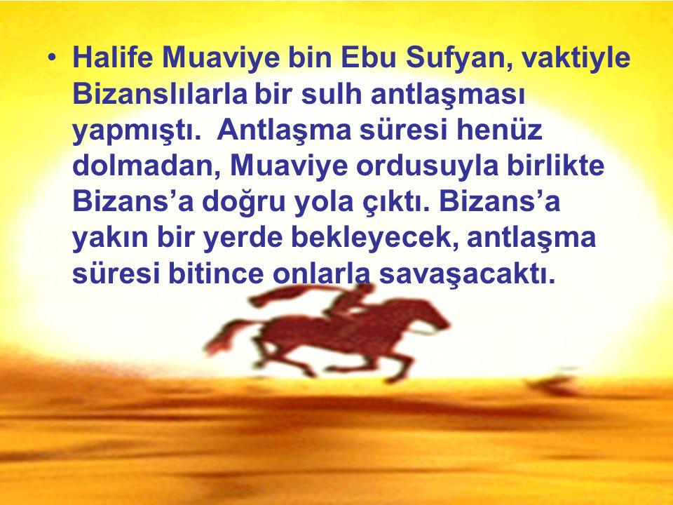 Halife Muaviye bin Ebu Sufyan, vaktiyle Bizanslılarla bir sulh antlaşması yapmıştı.