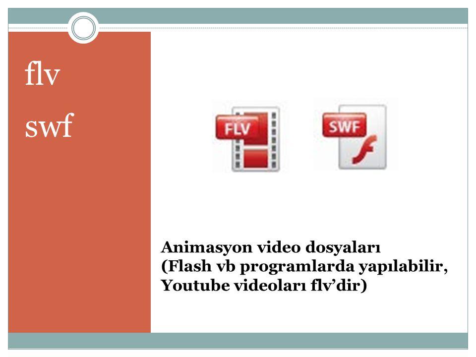 flv swf Animasyon video dosyaları (Flash vb programlarda yapılabilir, Youtube videoları flv'dir)