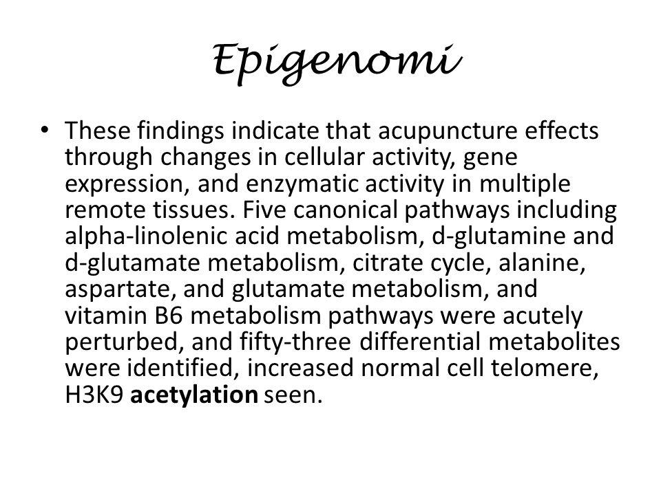 Epigenomi