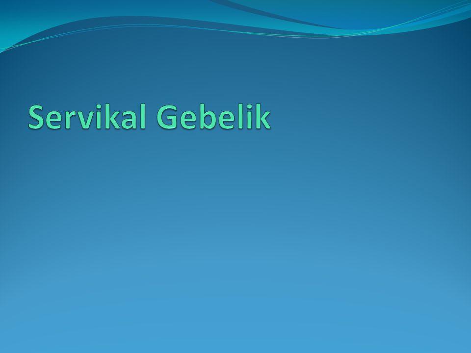 Servikal Gebelik