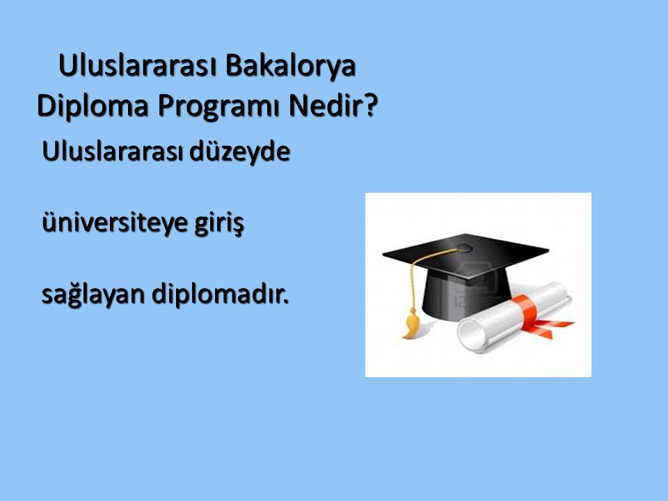 Uluslararası Bakalorya Diploma Programı Nedir