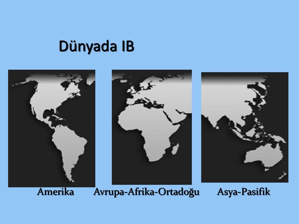 Amerika Avrupa-Afrika-Ortadoğu Asya-Pasifik