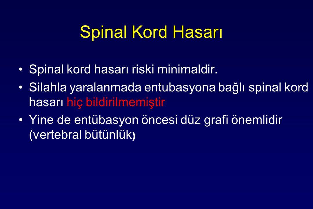 Spinal Kord Hasarı Spinal kord hasarı riski minimaldir.