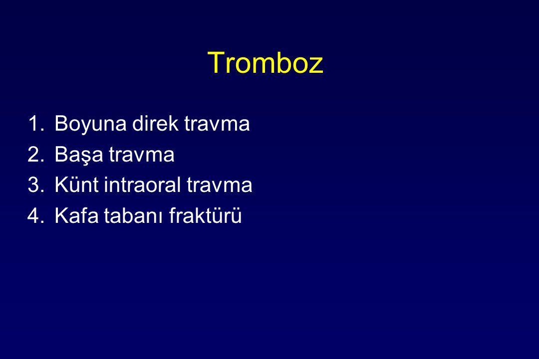 Tromboz Boyuna direk travma Başa travma Künt intraoral travma