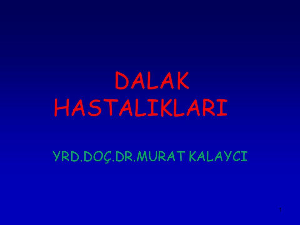 YRD.DOÇ.DR.MURAT KALAYCI