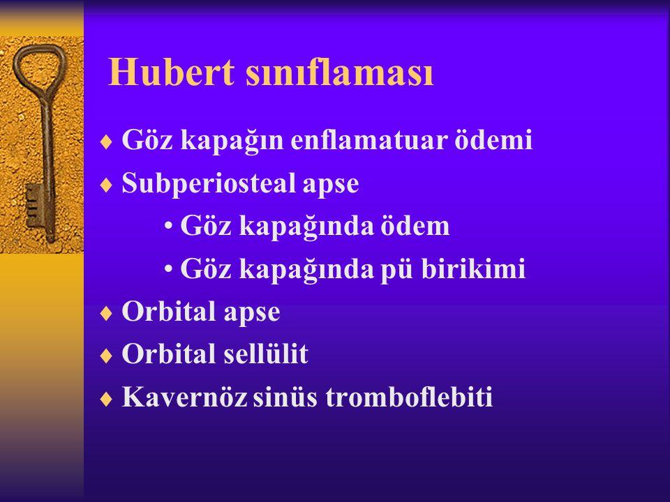Hubert sınıflaması Göz kapağın enflamatuar ödemi Subperiosteal apse