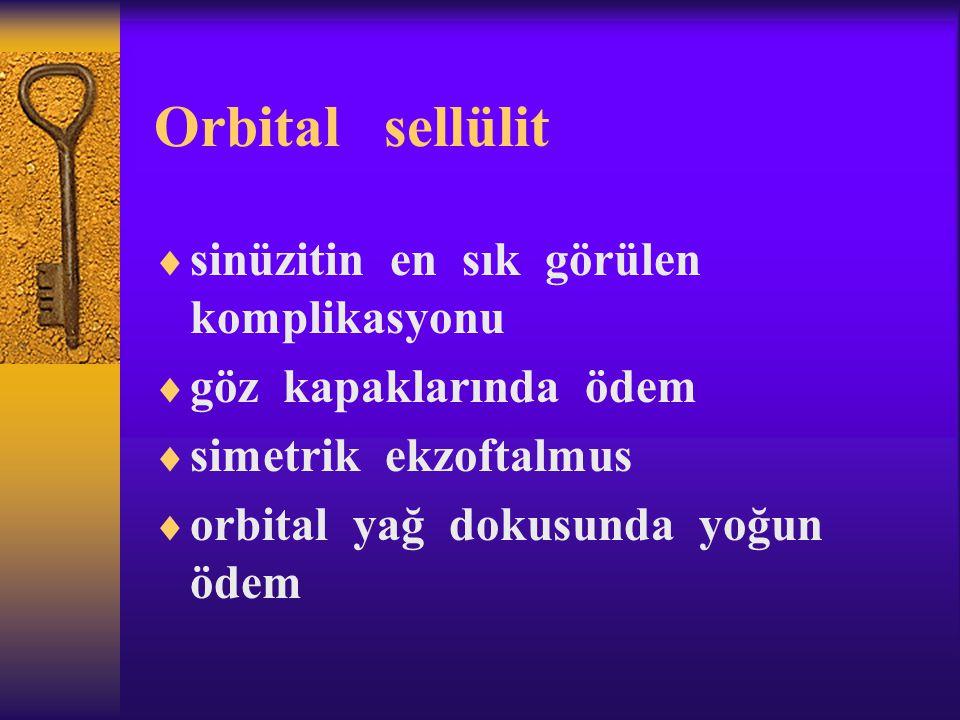 Orbital sellülit sinüzitin en sık görülen komplikasyonu