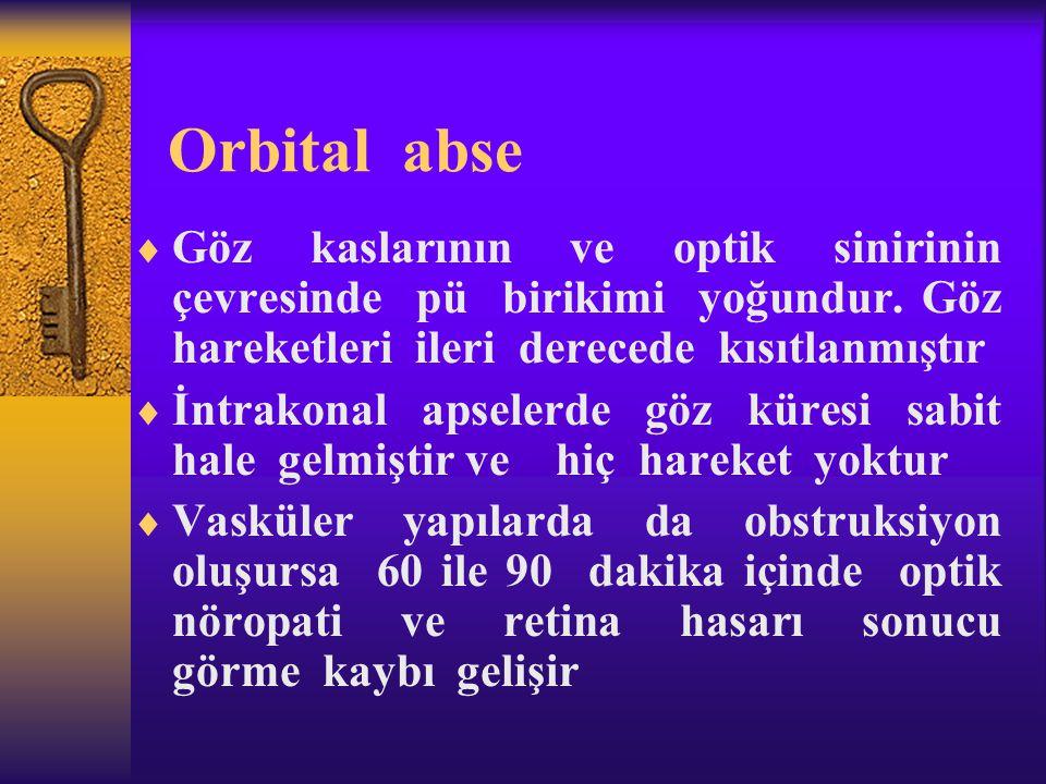 Orbital abse Göz kaslarının ve optik sinirinin çevresinde pü birikimi yoğundur. Göz hareketleri ileri derecede kısıtlanmıştır.