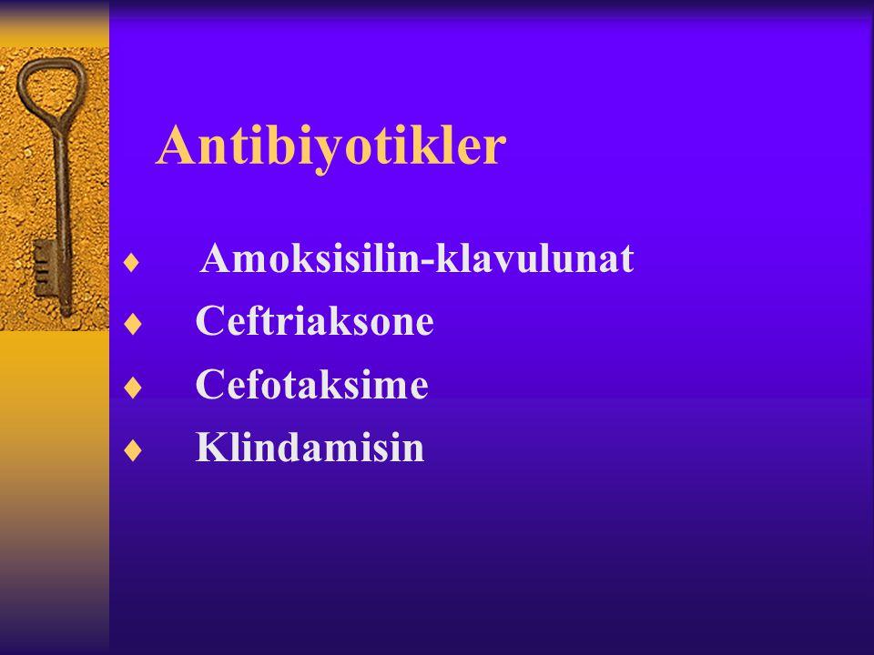 Antibiyotikler Ceftriaksone Cefotaksime Klindamisin