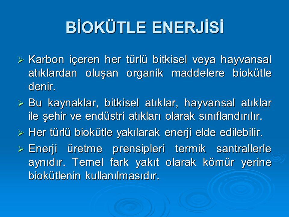 BİOKÜTLE ENERJİSİ Karbon içeren her türlü bitkisel veya hayvansal atıklardan oluşan organik maddelere biokütle denir.