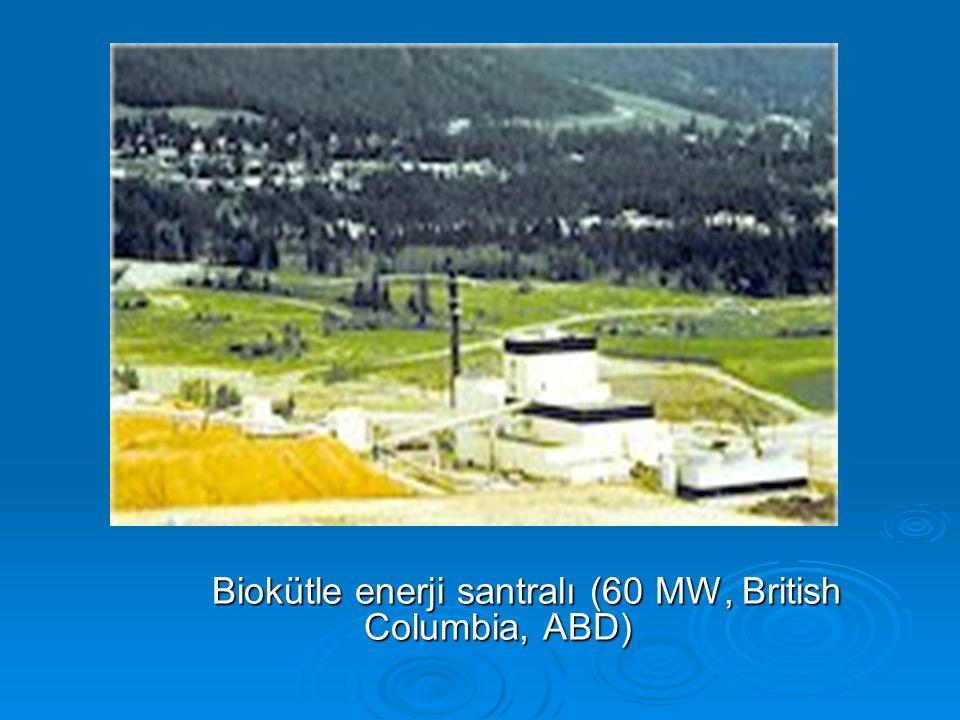 Biokütle enerji santralı (60 MW, British Columbia, ABD)