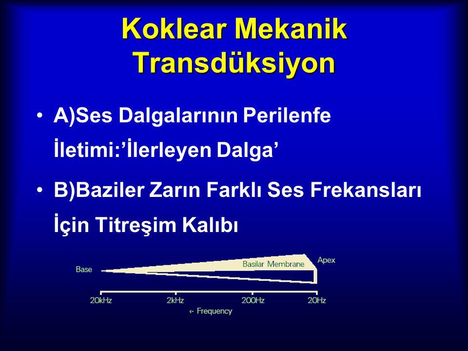 Koklear Mekanik Transdüksiyon