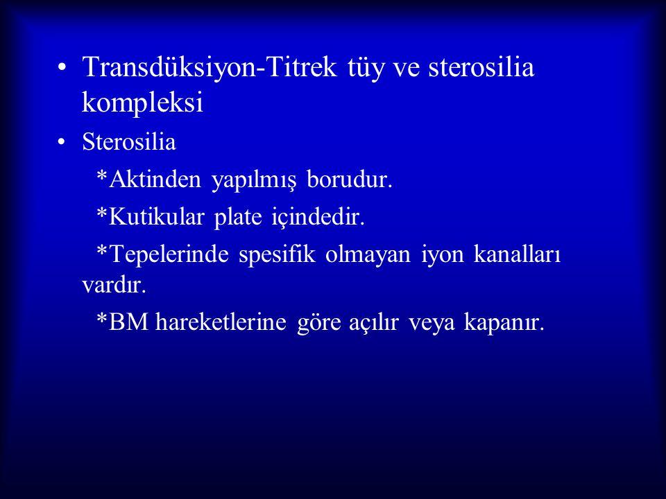 Transdüksiyon-Titrek tüy ve sterosilia kompleksi