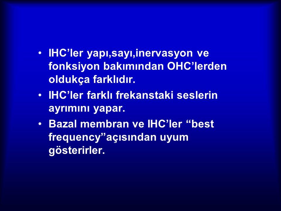 IHC'ler yapı,sayı,inervasyon ve fonksiyon bakımından OHC'lerden oldukça farklıdır.