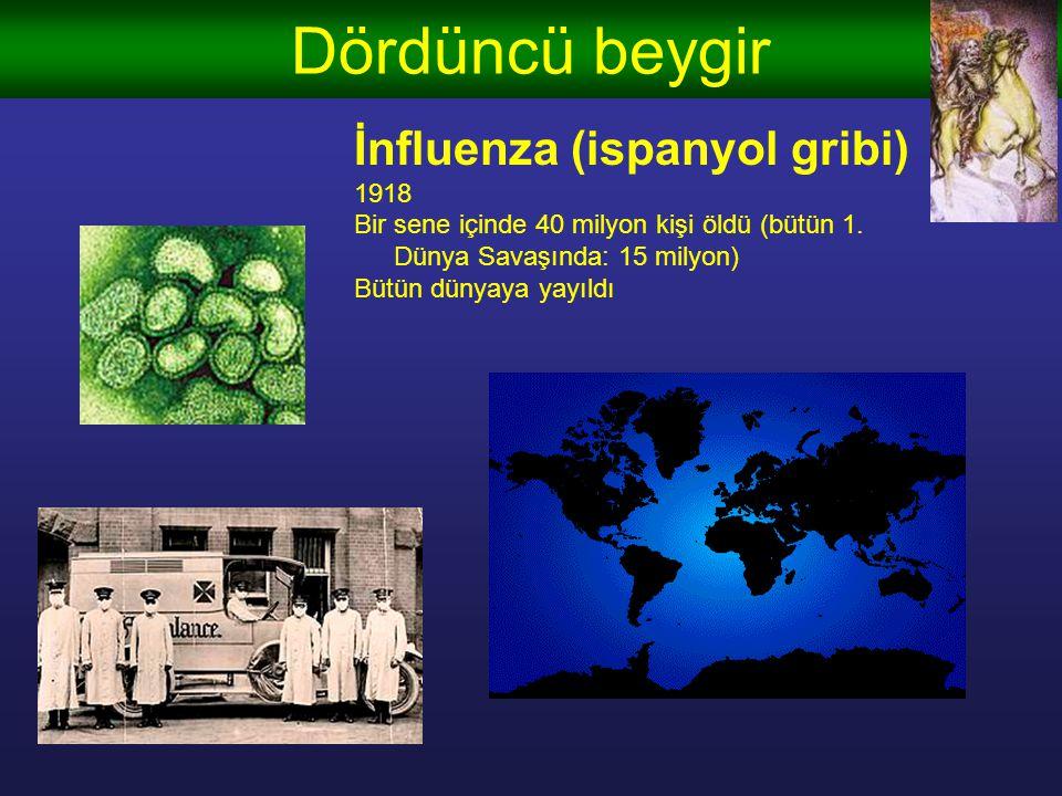 Dördüncü beygir İnfluenza (ispanyol gribi) 1918