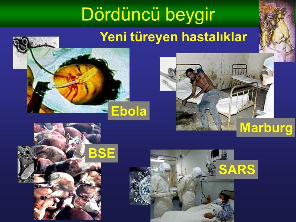 Dördüncü beygir Yeni türeyen hastalıklar Ebola Marburg BSE SARS