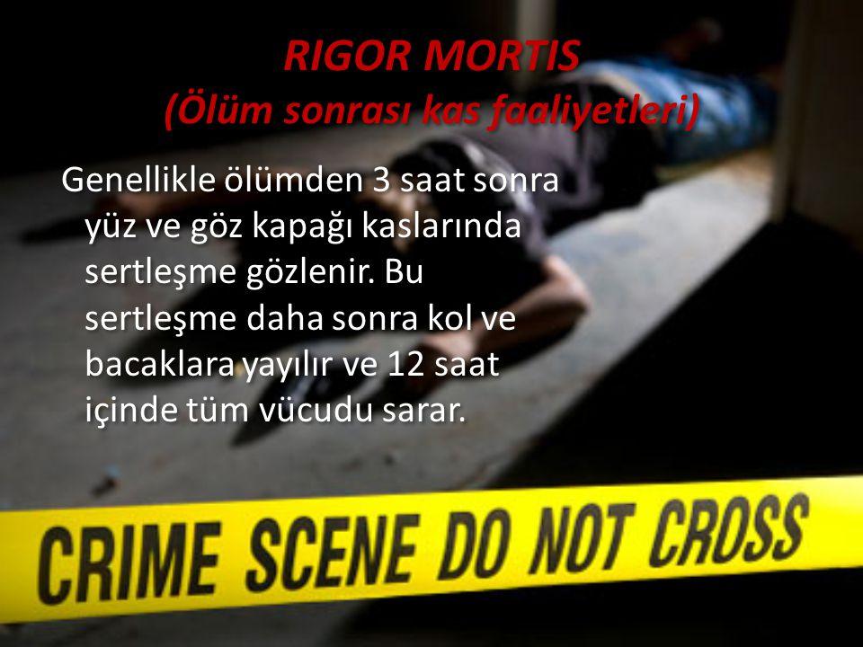 RIGOR MORTIS (Ölüm sonrası kas faaliyetleri)