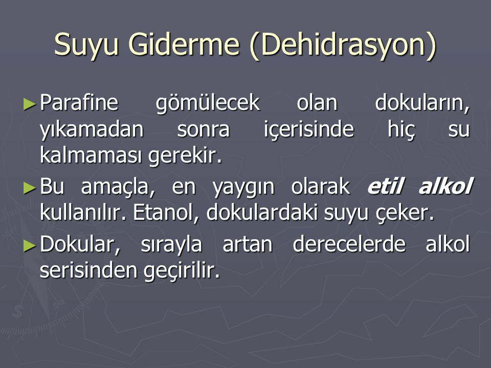 Suyu Giderme (Dehidrasyon)