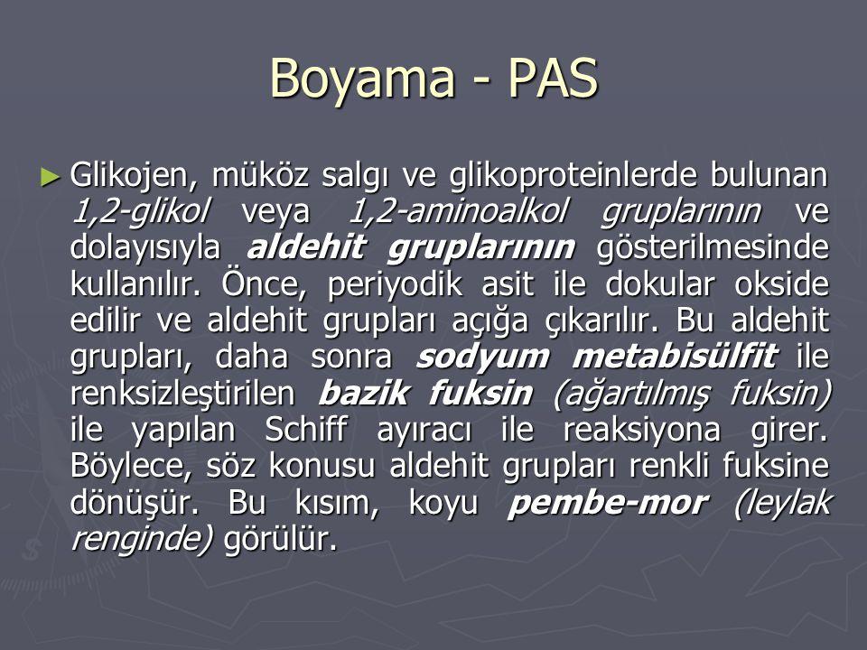 Boyama - PAS