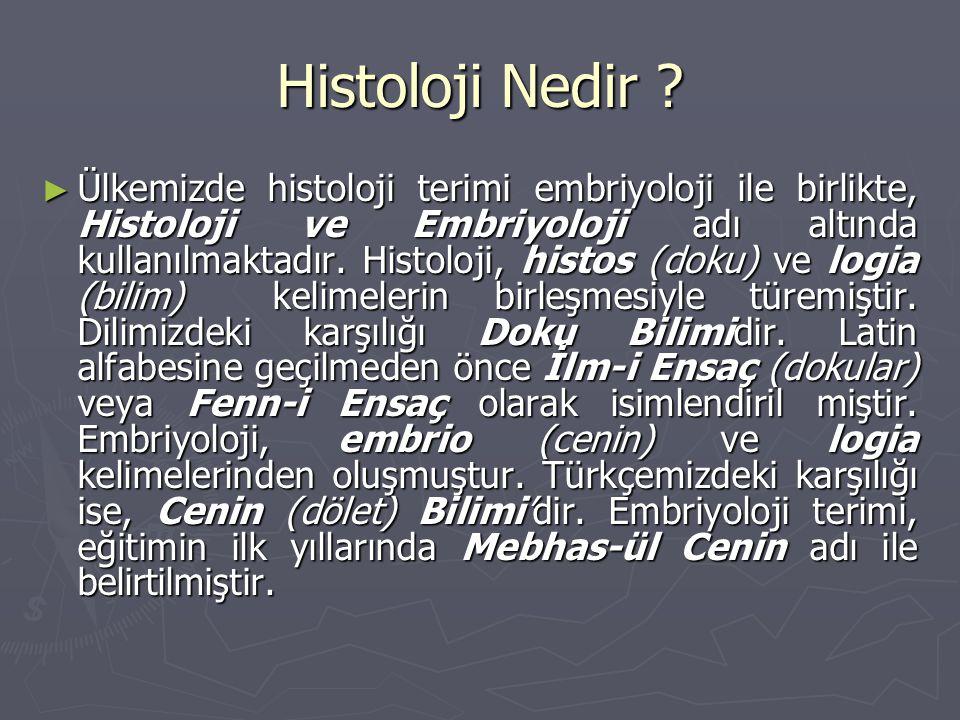 Histoloji Nedir