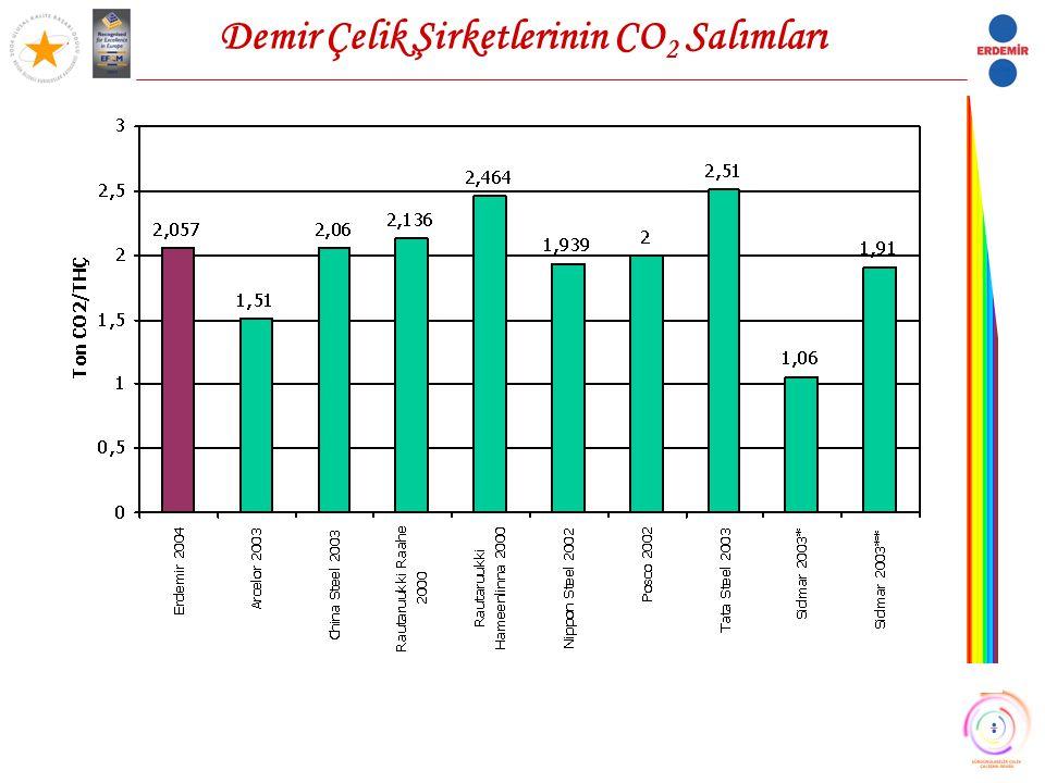 Demir Çelik Şirketlerinin CO2 Salımları
