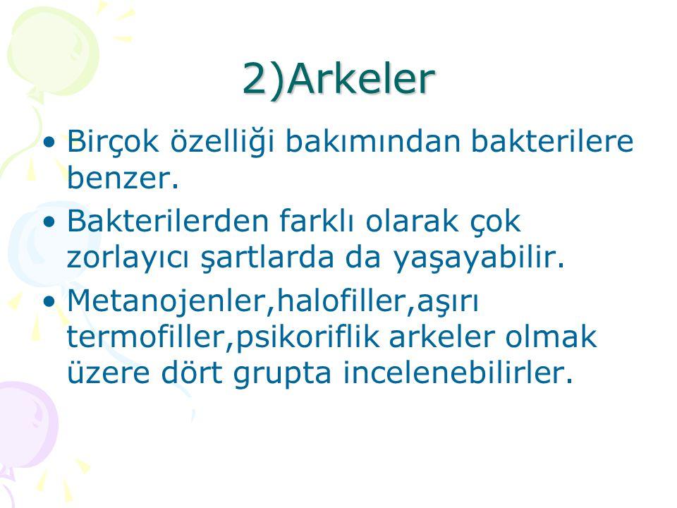 2)Arkeler Birçok özelliği bakımından bakterilere benzer.