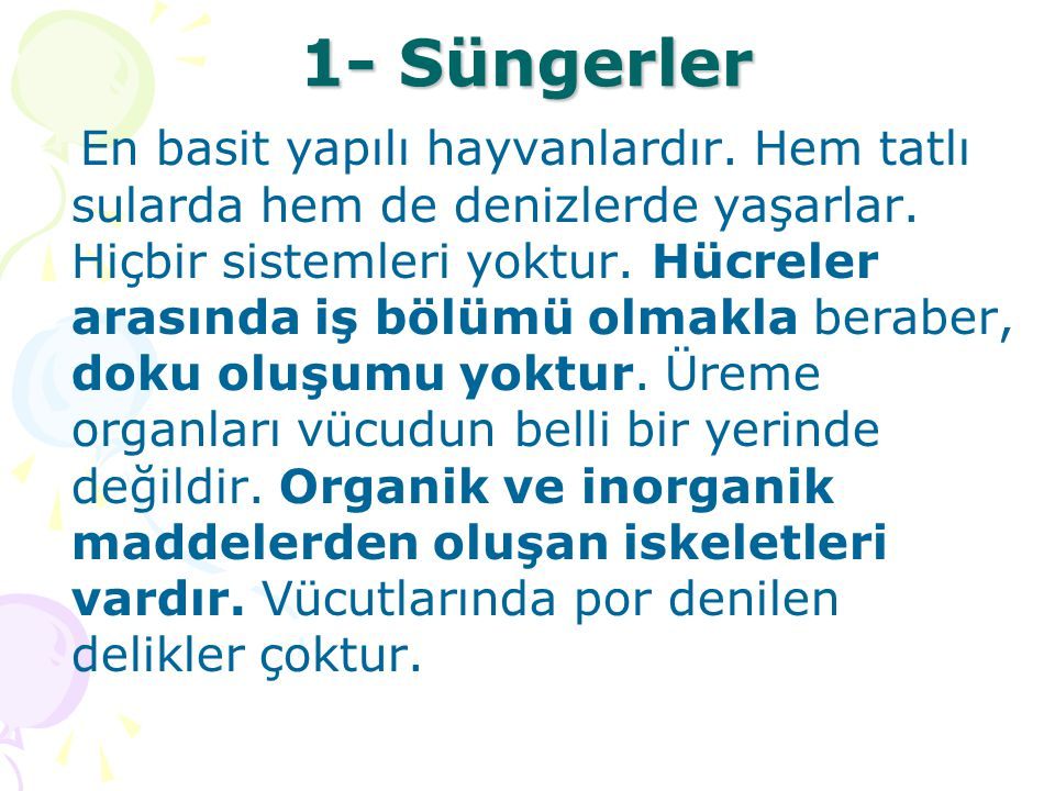 1- Süngerler
