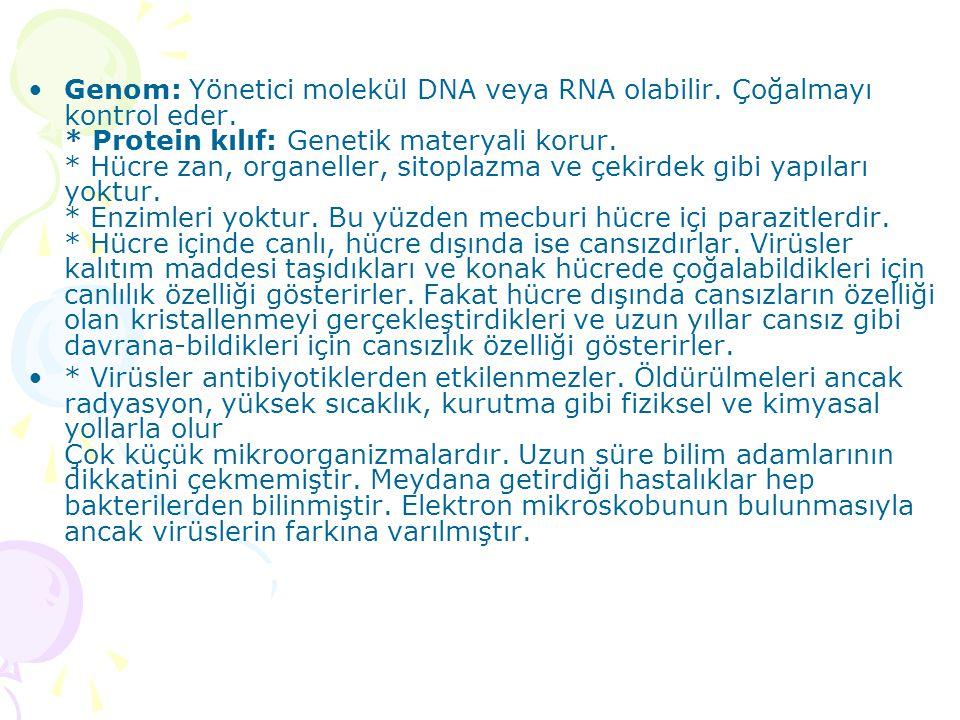 Genom: Yönetici molekül DNA veya RNA olabilir. Çoğalmayı kontrol eder