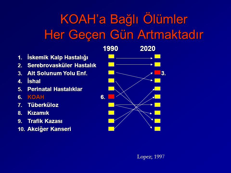 KOAH'a Bağlı Ölümler Her Geçen Gün Artmaktadır