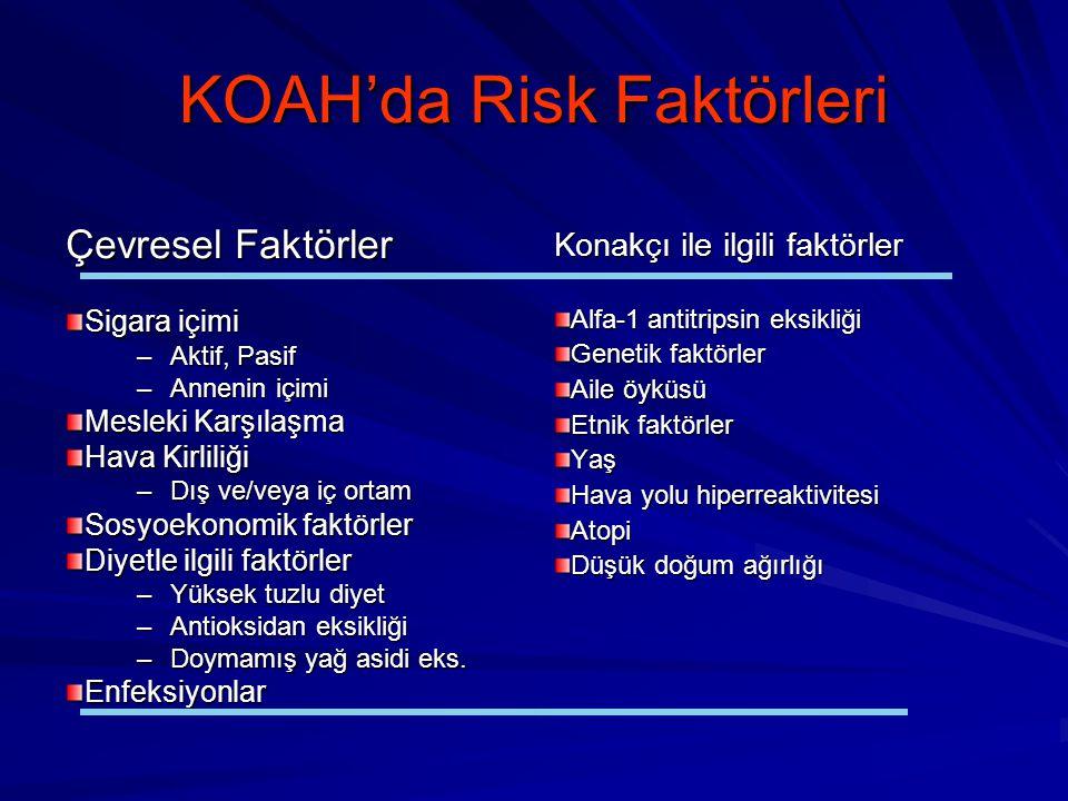 KOAH'da Risk Faktörleri