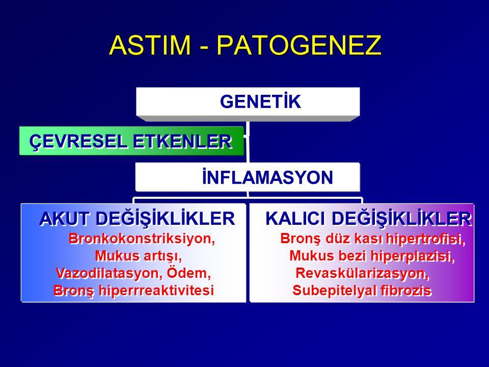 ASTIM - PATOGENEZ GENETİK ÇEVRESEL ETKENLER İNFLAMASYON