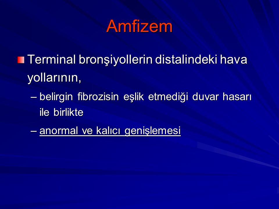 Amfizem Terminal bronşiyollerin distalindeki hava yollarının,