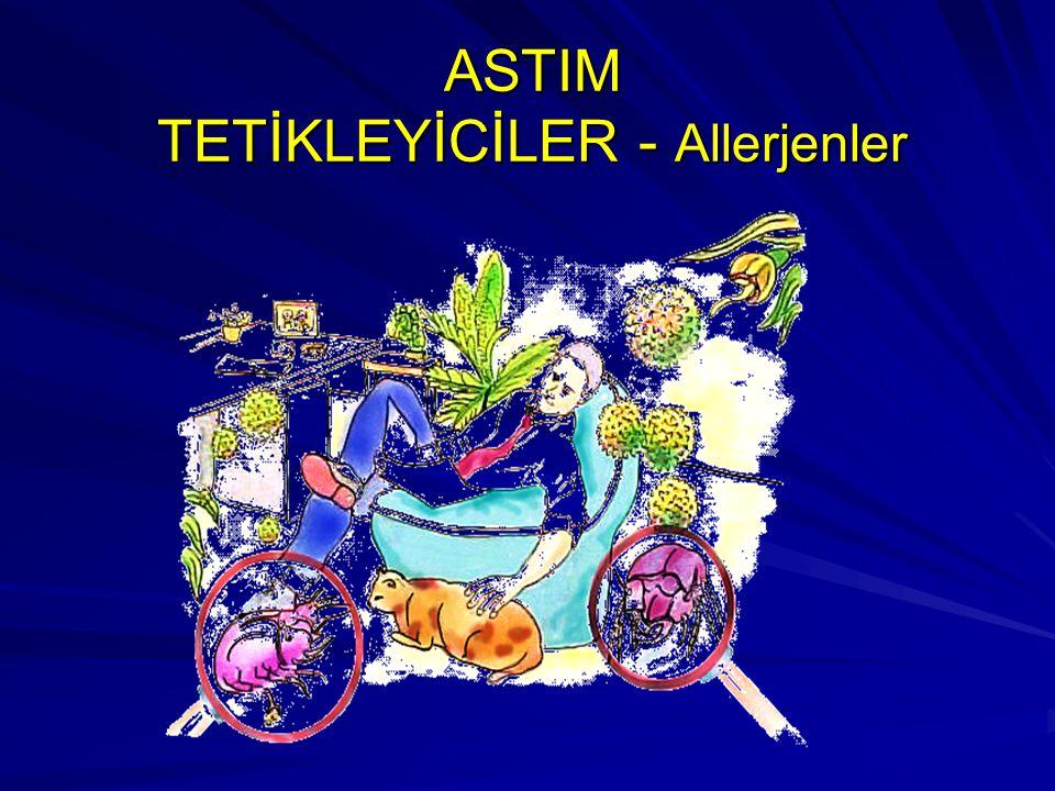 ASTIM TETİKLEYİCİLER - Allerjenler