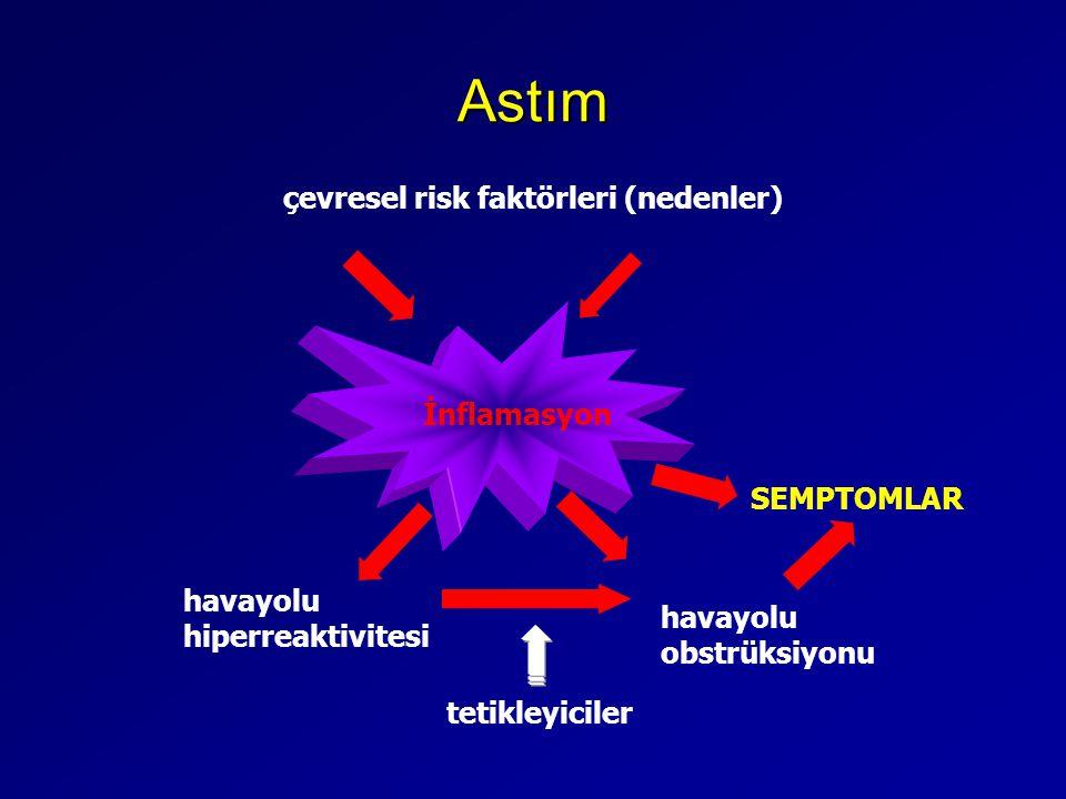 Astım çevresel risk faktörleri (nedenler) İnflamasyon SEMPTOMLAR