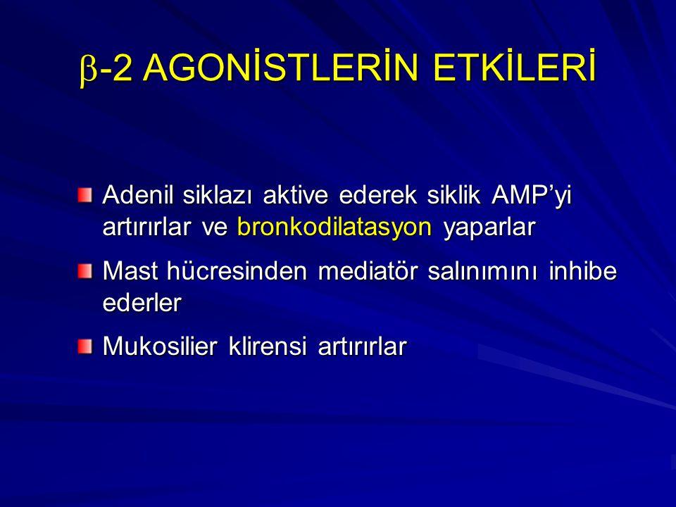 b-2 AGONİSTLERİN ETKİLERİ