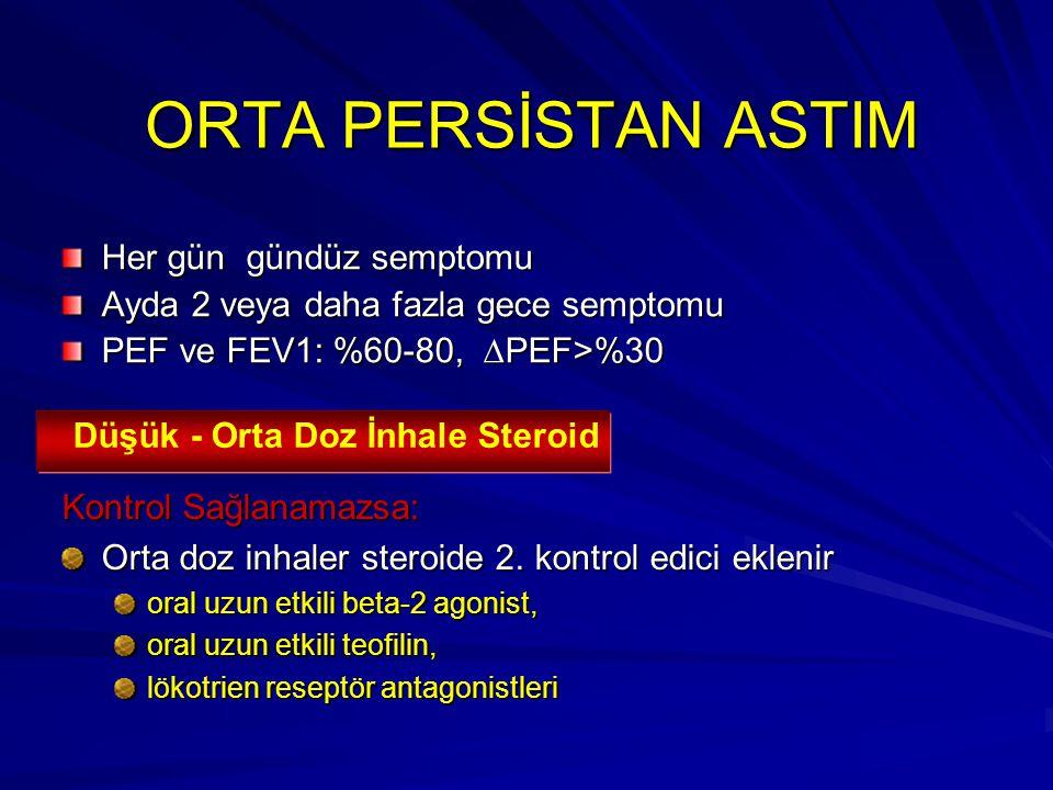 ORTA PERSİSTAN ASTIM Her gün gündüz semptomu