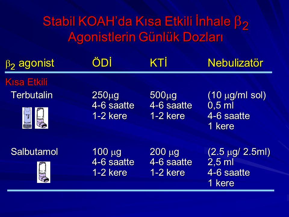 Stabil KOAH'da Kısa Etkili İnhale b2 Agonistlerin Günlük Dozları