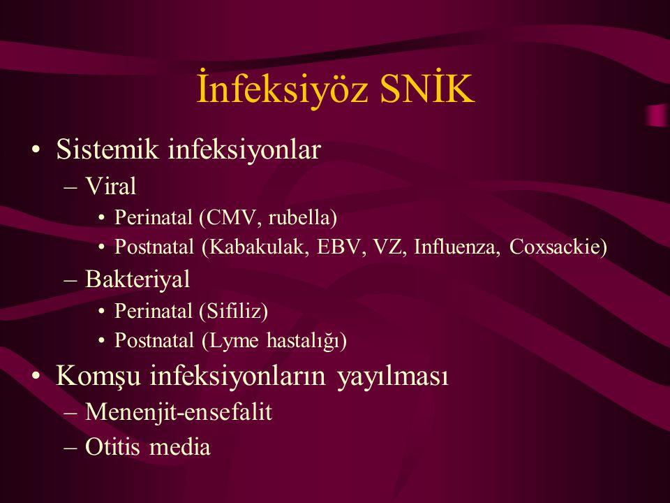 İnfeksiyöz SNİK Sistemik infeksiyonlar Komşu infeksiyonların yayılması