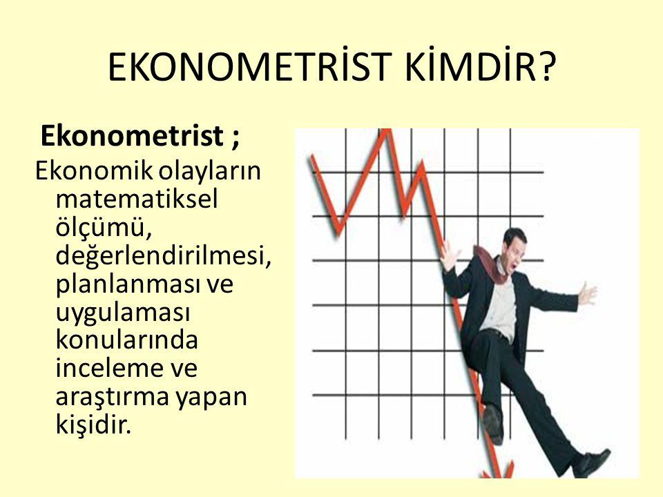 EKONOMETRİST KİMDİR Ekonometrist ;