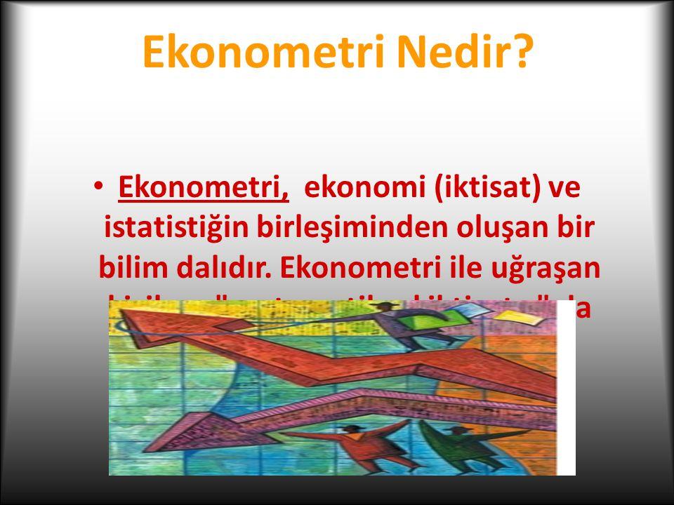 Ekonometri Nedir