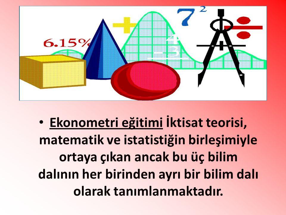 Ekonometri eğitimi İktisat teorisi, matematik ve istatistiğin birleşimiyle ortaya çıkan ancak bu üç bilim dalının her birinden ayrı bir bilim dalı olarak tanımlanmaktadır.