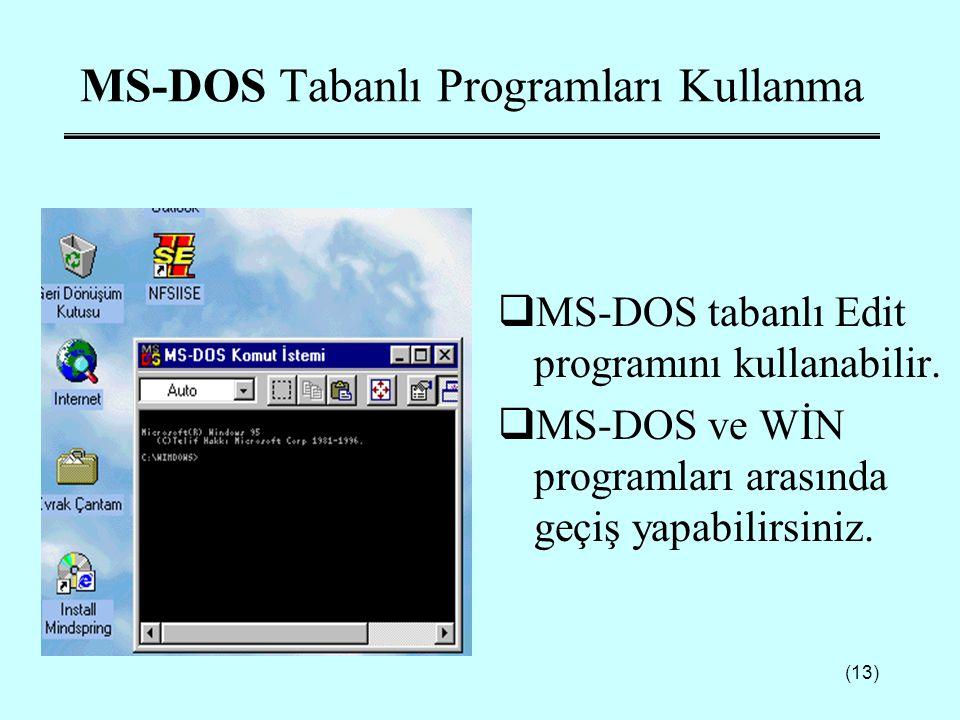 MS-DOS Tabanlı Programları Kullanma