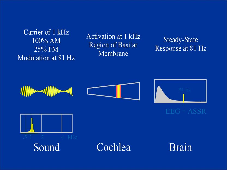 81 Hz EEG + ASSR .5 1 2 4 kHz