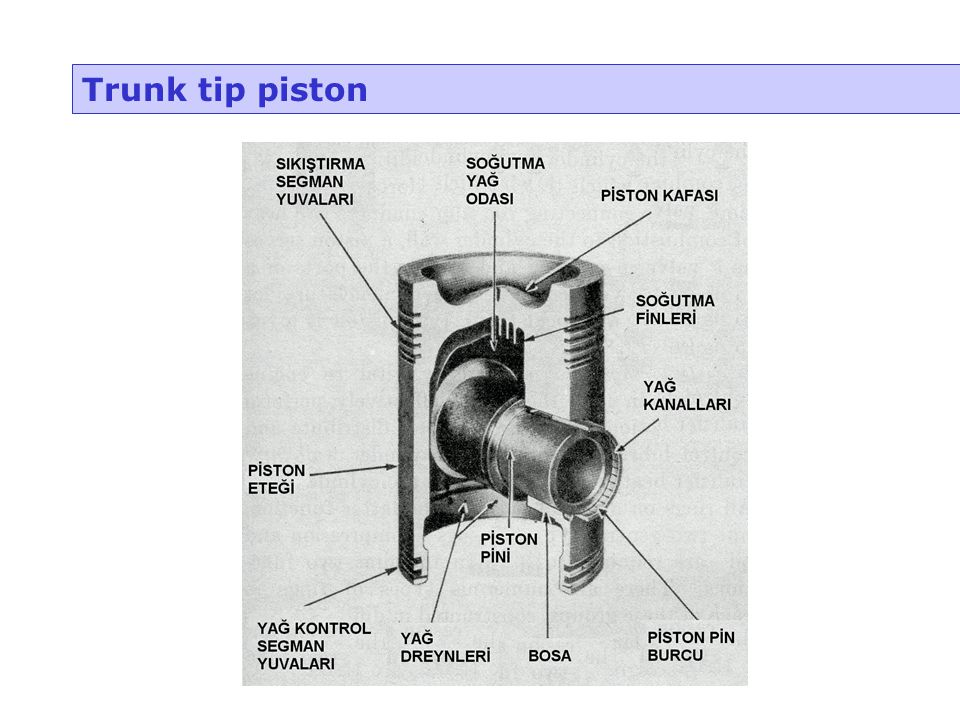 Trunk tip piston